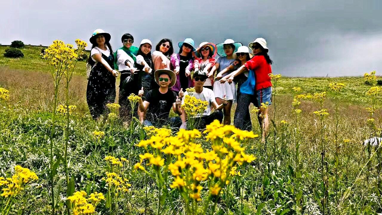 多彩貴州 烏蒙大草原